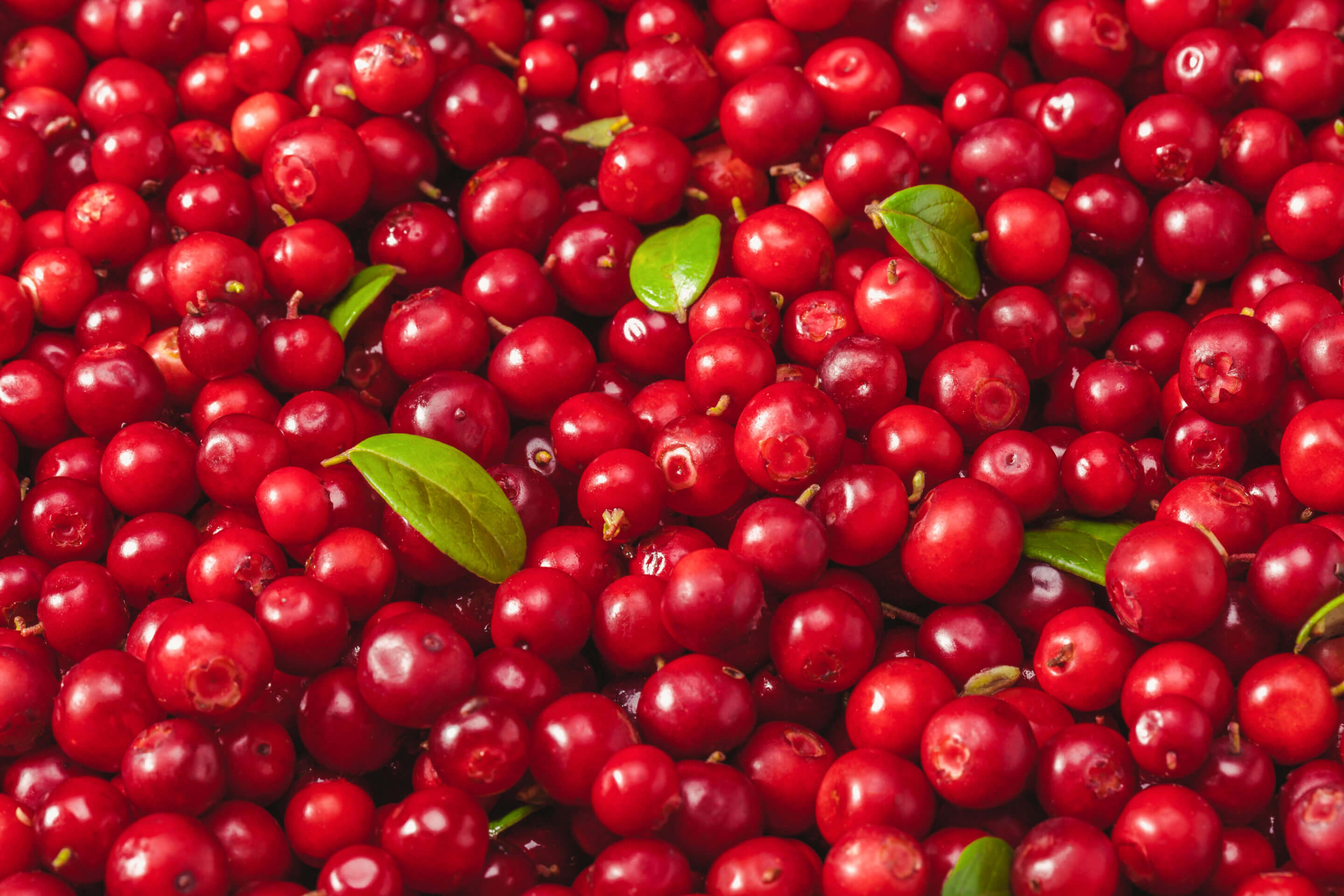 Natural Cranberry nexira
