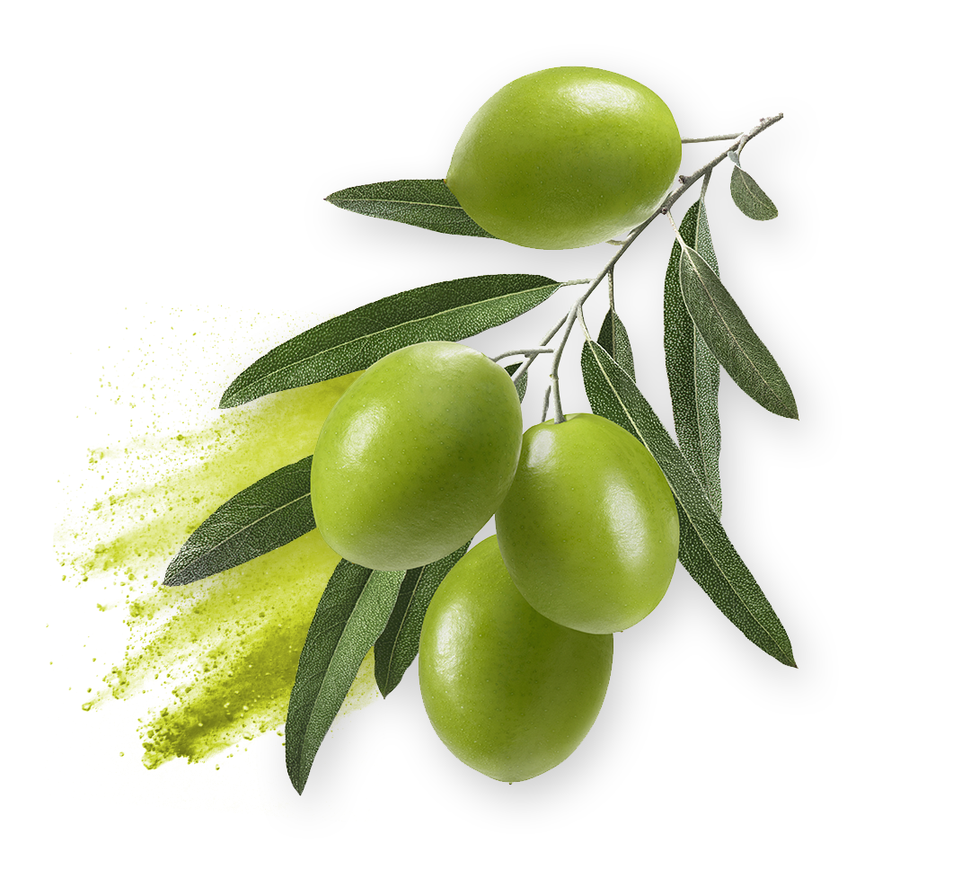 oliola ingredient