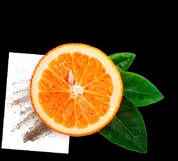 serenzo ingredient
