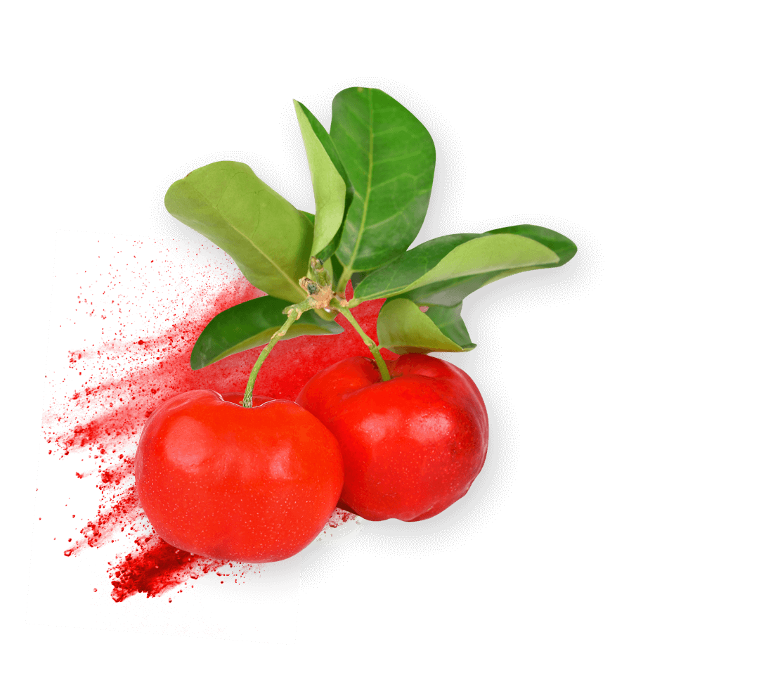 acerola ingredient