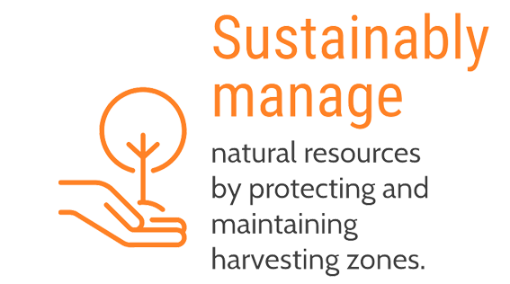 Sustainably manage