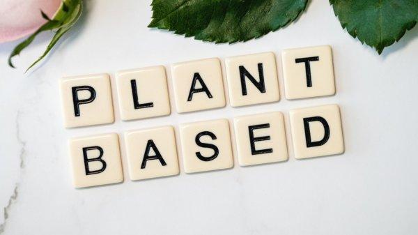 plant-based alternatives
