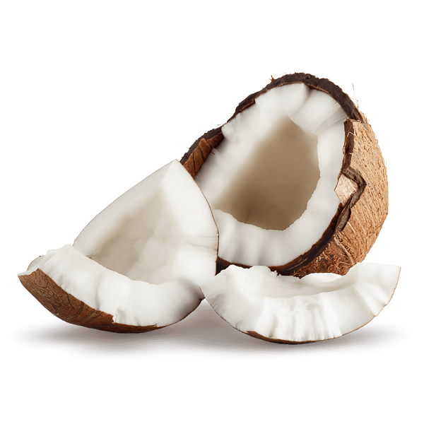 MCT(1Coco)