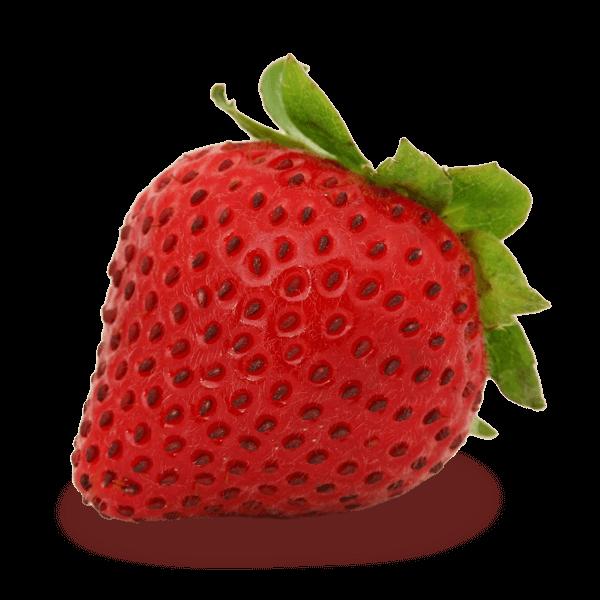 Strawberry(1Fraise)